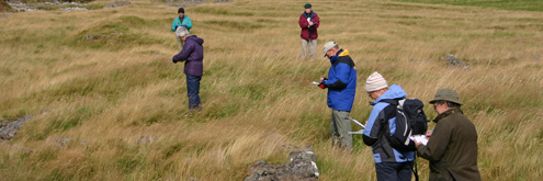 People surveying a field